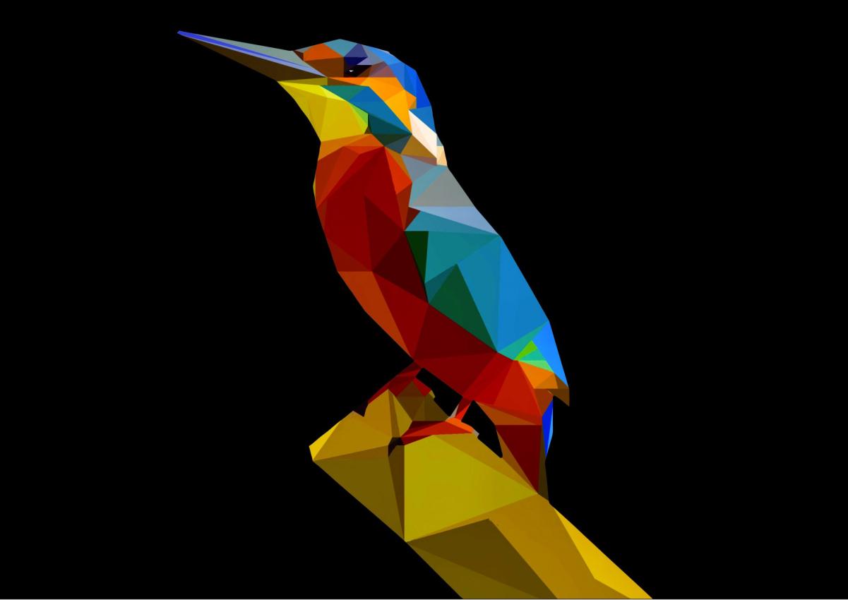 Premium Kolibri
